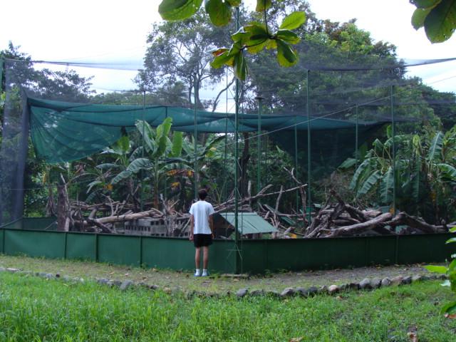 702_iguanafarm3